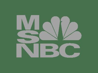 msnbc-logo-gray-med